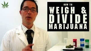 How To Weigh And Divide Marijuana Tricks Tips W Bogart 15