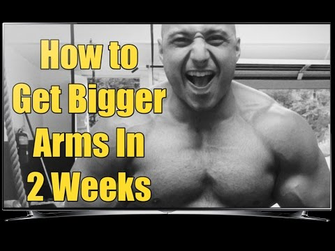 How to make your arms bigger in 1 week -