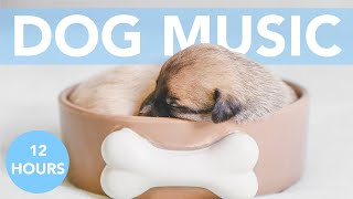 FIREWORK MUSIC! Calm Your Dog from Bonfire Night!