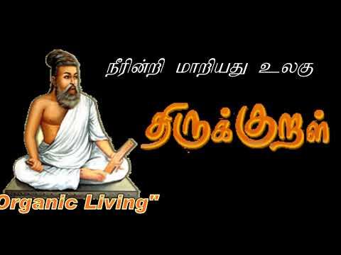 மழை வரும் மரம் நடு   How Rain is formed Tamil   How planting tree helps Rain   Organic Living