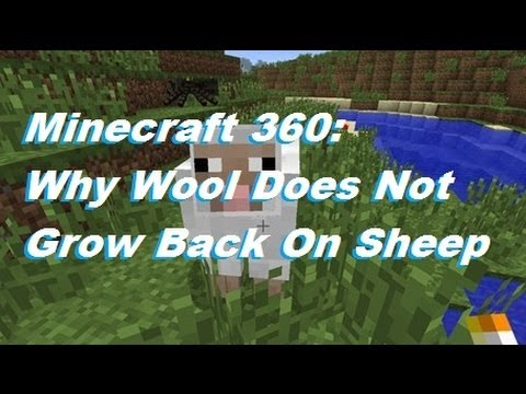 Minecraft 360: Why Wool Does Not Grow Back On Sheep TU7