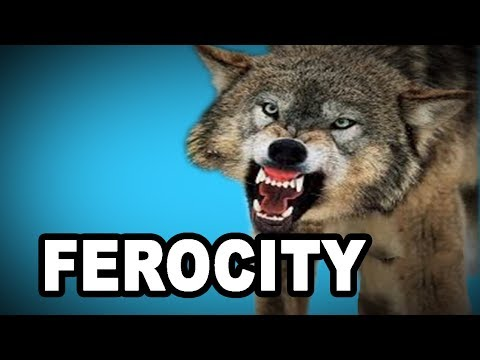 Learn English Words: FEROCITY - Meaning, Vocabulary with Pictures and Examples