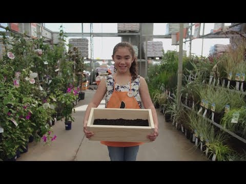 How to Build a Planter Box | Mitre 10 Easy As for Kids