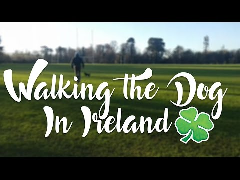 Walking The Dog in Ireland
