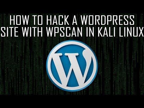 Finding Vulnerabilities in Wordpress Site - WPScan