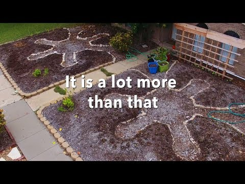 Permaculture in under a minute...