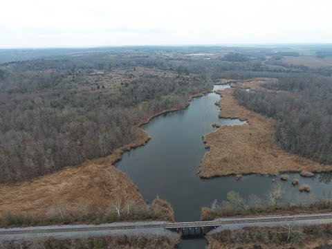 264.18 Acres of Land Alongside the Green River in Western KY.