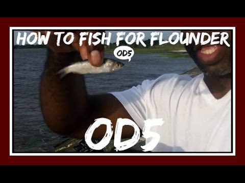 How to Fish For Flounder with Finger Mullet