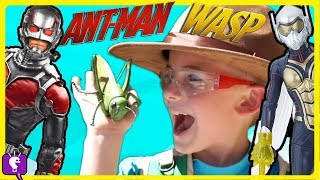 INSECT SAFARI! Wasp + Antman Adventure Scavenger Hunt z  by HobbyKidsTV