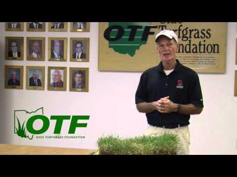 Turf Tips - July 4, 2014