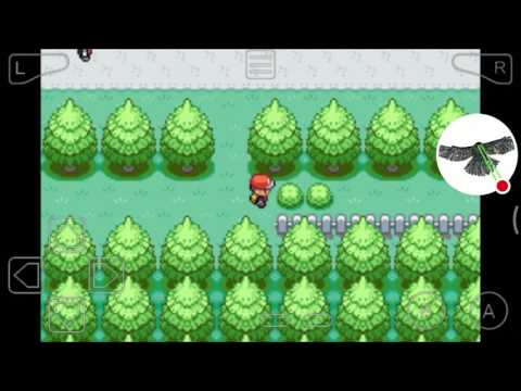 HOW TO GET AN EEVEE IN POKEMON FIRE RED🔥!!!!!!