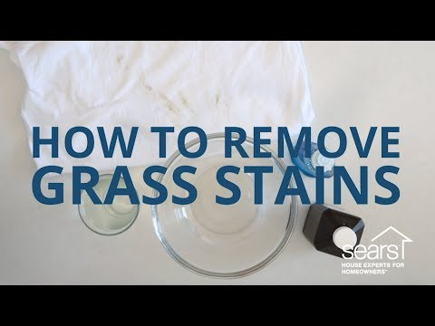 Sears Home Hacks Tested: How to Remove Grass Stains from Clothing