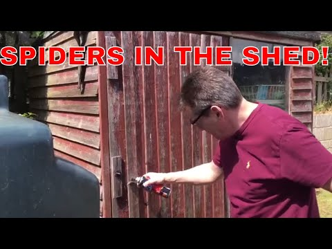 EPIC FAIL, trying to get rid of the spiders in the shed