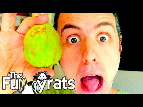 WHAT DOES A GUAVA (GUAYABA) TASTE LIKE? | Day 2148