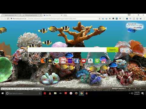Cool Marine aquarium lite mode for computer