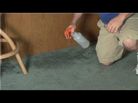 Carpet Cleaning : How to Remove a Damp Smell from Carpet