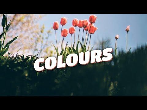Zeus X Crona & Denis Elezi & Chris Linton - Colours (Lyrics Video) [No Copyright]