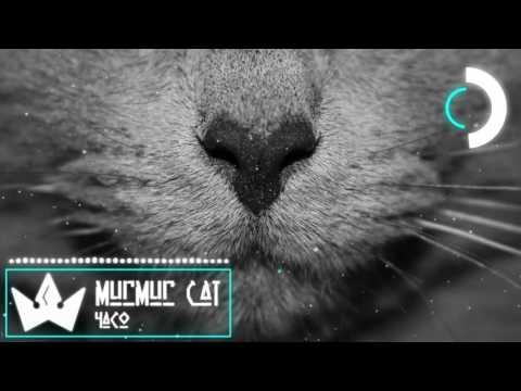 4ACO  -  Murmur Cat
