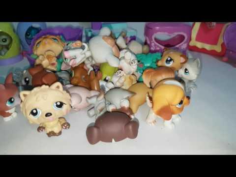 Littlest Pet Shop Pets for Sale on Ebay