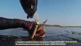 рыбалка в седневе