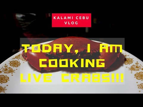 Today, I am cooking LIVE Crabs!!!