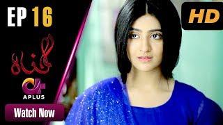 Gunnah - Episode 16 | Aplus Dramas | Sara Elahi, Shamoon Abbasi, Asad Malik | Pakistani Drama