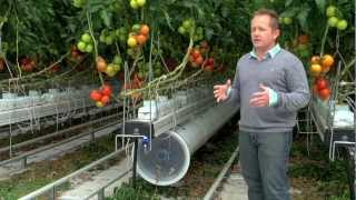 Greenhouse promo video for Nature Fresh Farms Leamington