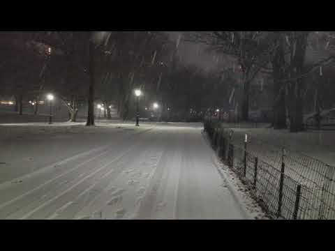Early Morning Snow Storm Seen From Central Park In Manhattan,  New York