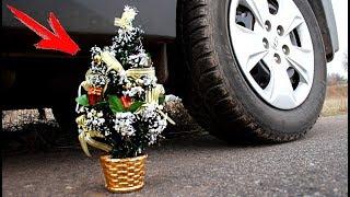 EXPERIMENT: CAR VS CHRISTMAS TREE