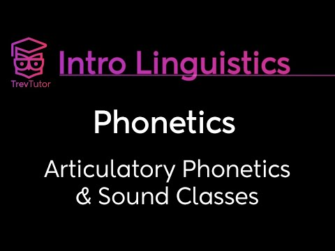 [Introduction to Linguistics] Phonetics, International Phonetic Alphabetic, and Sound Classes