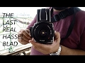 THE LAST REAL HASSELBLAD the hasselblad 503cw (camera talk #3)