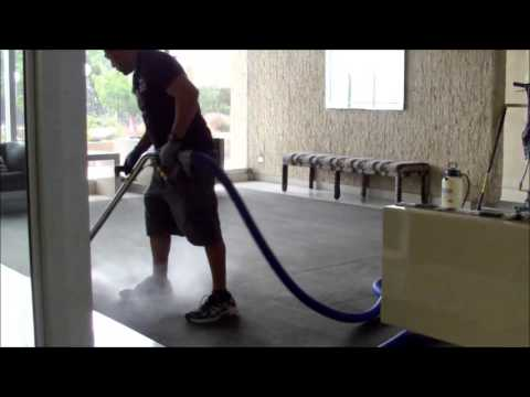 Commercial Carpet Cleaning/ professional steam cleaning