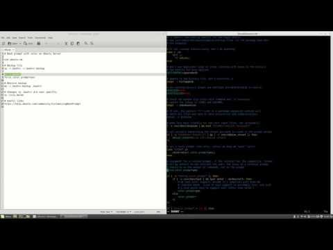 Bash prompt with color on Ubuntu Server #60