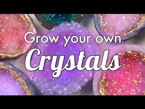 How to grow your own crystals!