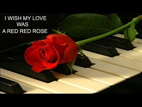 I Wish My Love Was A Red Red Rose ☘️