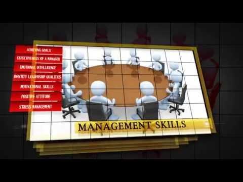SKILLWISE CONSULTING - SOFT SKILLS