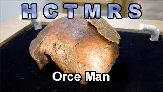 How Creationism Taught Me Real Science  70 Orce Man