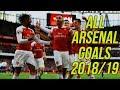 All 112 Arsenal Goals 201819