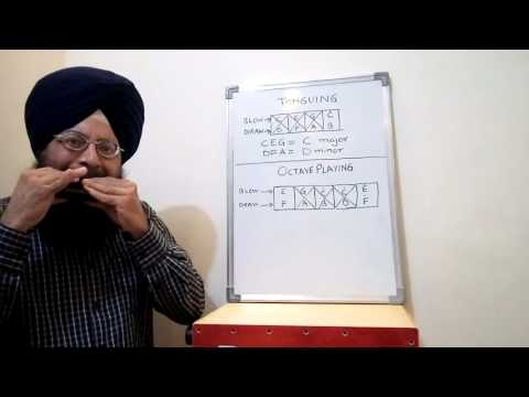 Learn harmonica (Lesson 11) tonguing and octave playing