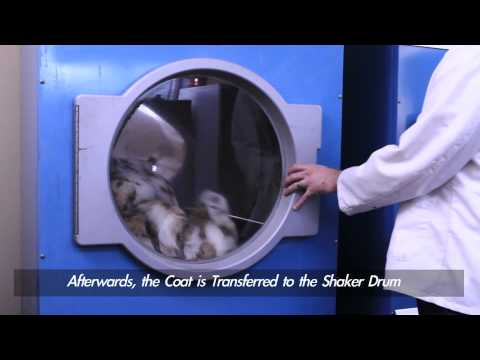 Fur Cleaning and Glazing 101