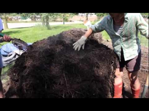 Elaine Ingham Soil Food Web Compost and Compost Tea