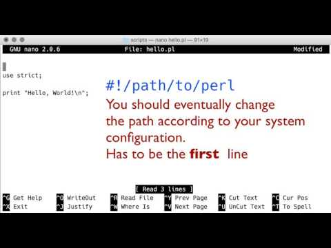 Making a Perl script executable: the