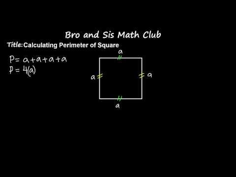 6th Grade Math Calculating Perimeter of Square