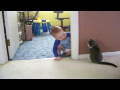 Peek-A-Boo, Kitten and Baby!