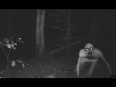 10 Mysterious Creatures Caught On Tape In Real Life