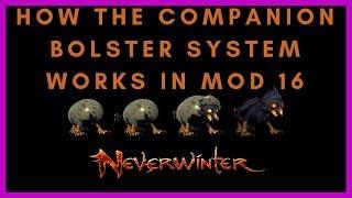 Neverwinter: Fun with Math #1 - Companion stats - PakVim net