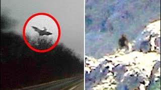 5 Mysterious Photos That Cannot Be Explained #3