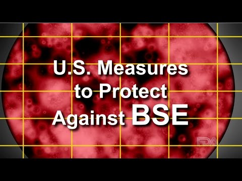 U.S. Measures to Protect Against BSE