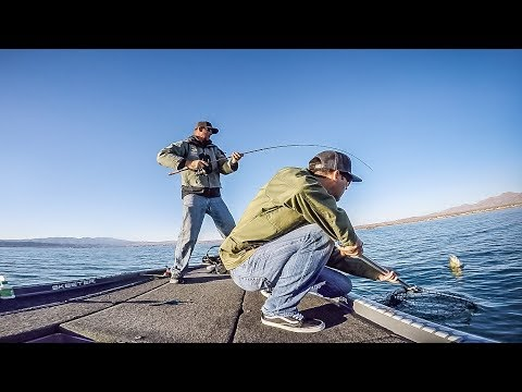 Shaun Bailey's Winning Day on Lake Havasu