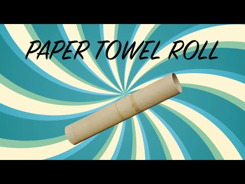 The AMAZING Paper Towel Roll!!